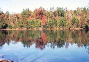Hutchins Lake